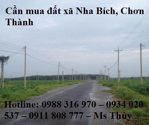 Cần mua đất xã Nha Bích, Chơn Thành